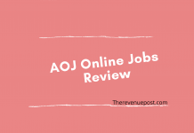 AOJ Online Jobs Review